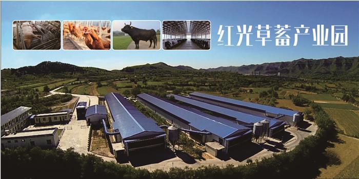 红光草畜产业园