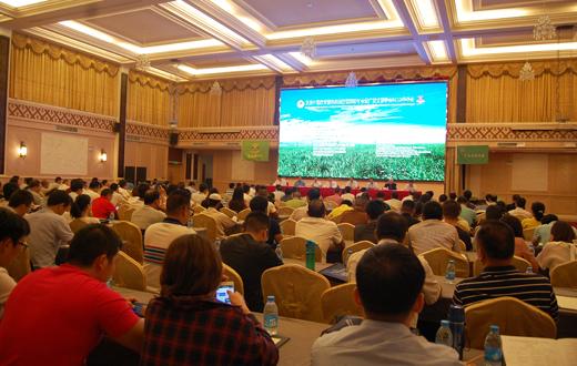 彭隆荣应邀参加发展中国家甘蔗科技创新国际研讨会
